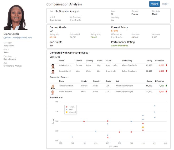 Compensation Analysis Screenshot | Job Evaluation | Pilat